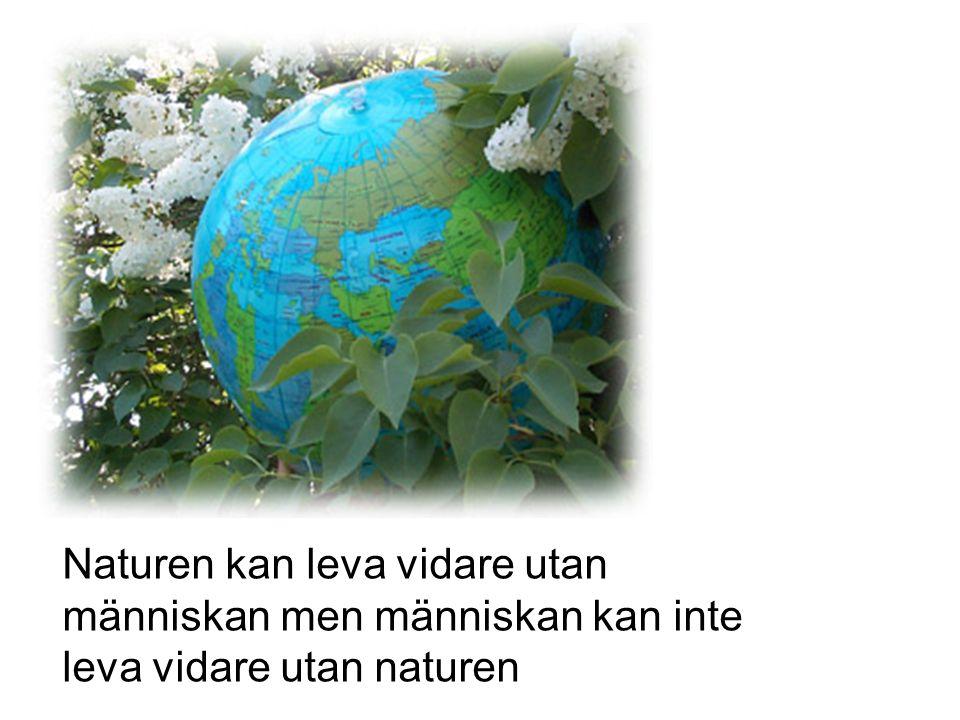 Naturen kan leva vidare utan människan men människan kan inte leva vidare utan naturen