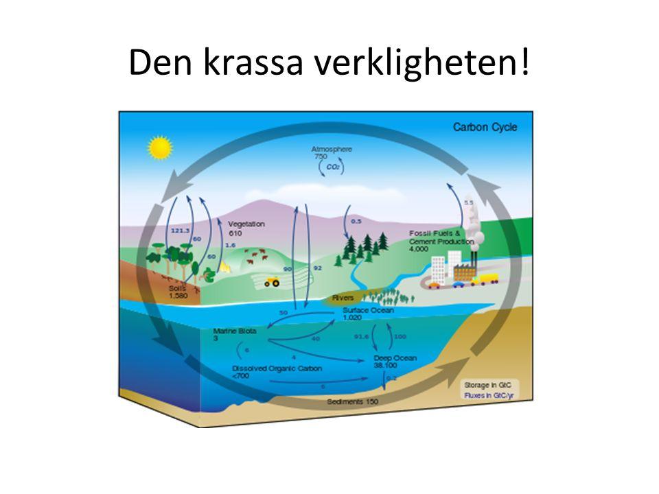 Atmosfär Ökad mängd koldioxid i atmosfären.
