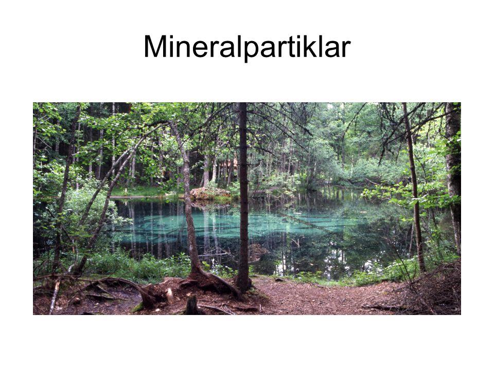 Mineralpartiklar