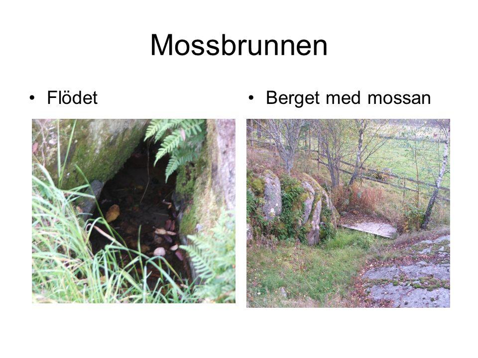 Mossbrunnen FlödetBerget med mossan