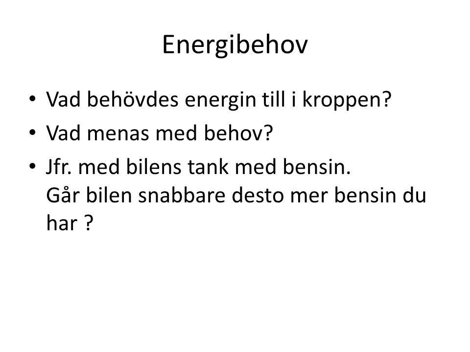 Energibehov Vad behövdes energin till i kroppen? Vad menas med behov? Jfr. med bilens tank med bensin. Går bilen snabbare desto mer bensin du har ?