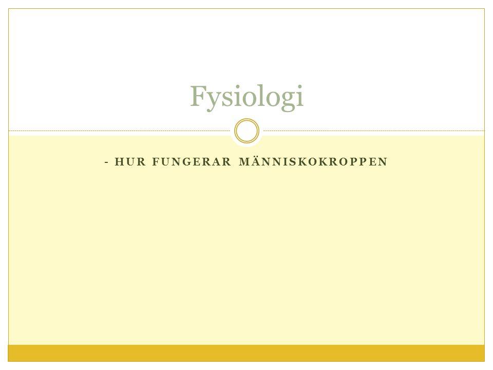 - HUR FUNGERAR MÄNNISKOKROPPEN Fysiologi