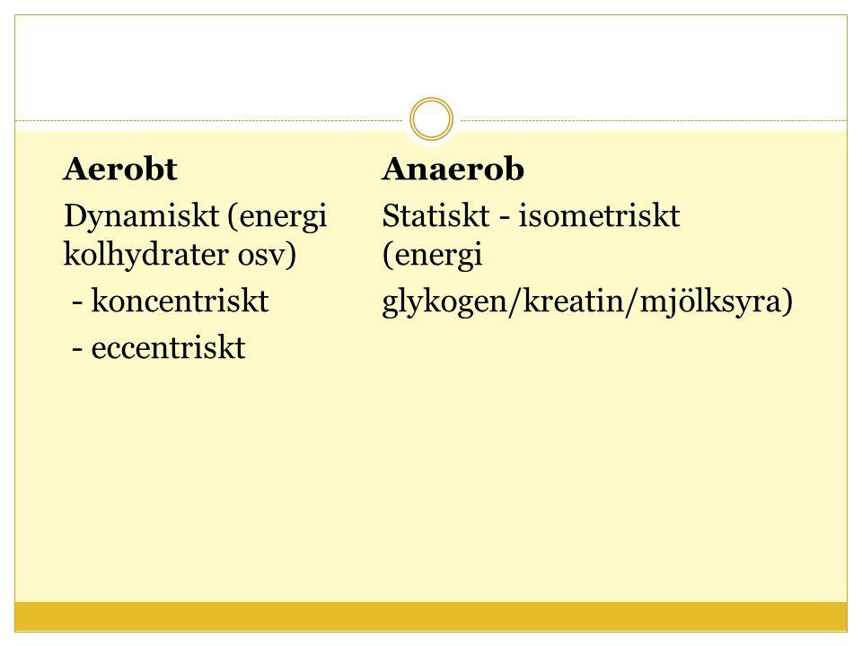 AerobtAnaerob Dynamiskt (energi Statiskt - isometriskt kolhydrater osv) (energi - koncentriskt glykogen/kreatin/mjölksyra) - eccentriskt