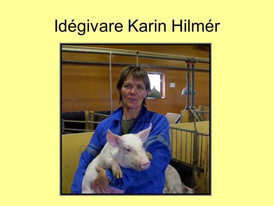 Idégivare Karin Hilmér