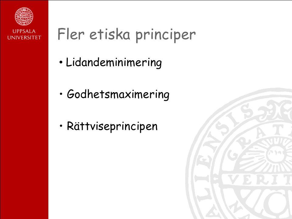Fler etiska principer Lidandeminimering Godhetsmaximering Rättviseprincipen