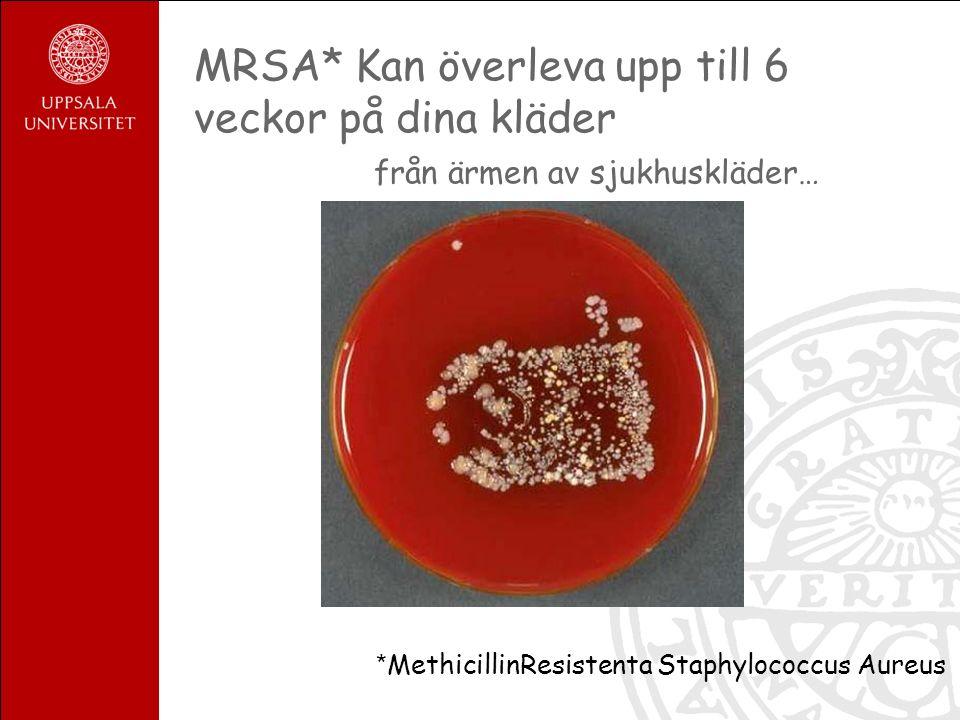MRSA* Kan överleva upp till 6 veckor på dina kläder från ärmen av sjukhuskläder… * MethicillinResistenta Staphylococcus Aureus