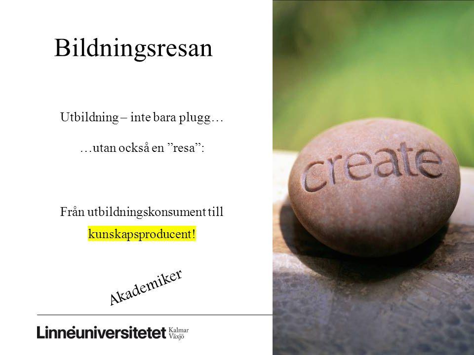 Bildningsresan © Åsa Sjöblom Utbildning – inte bara plugg… …utan också en resa : Från utbildningskonsument till kunskapsproducent.