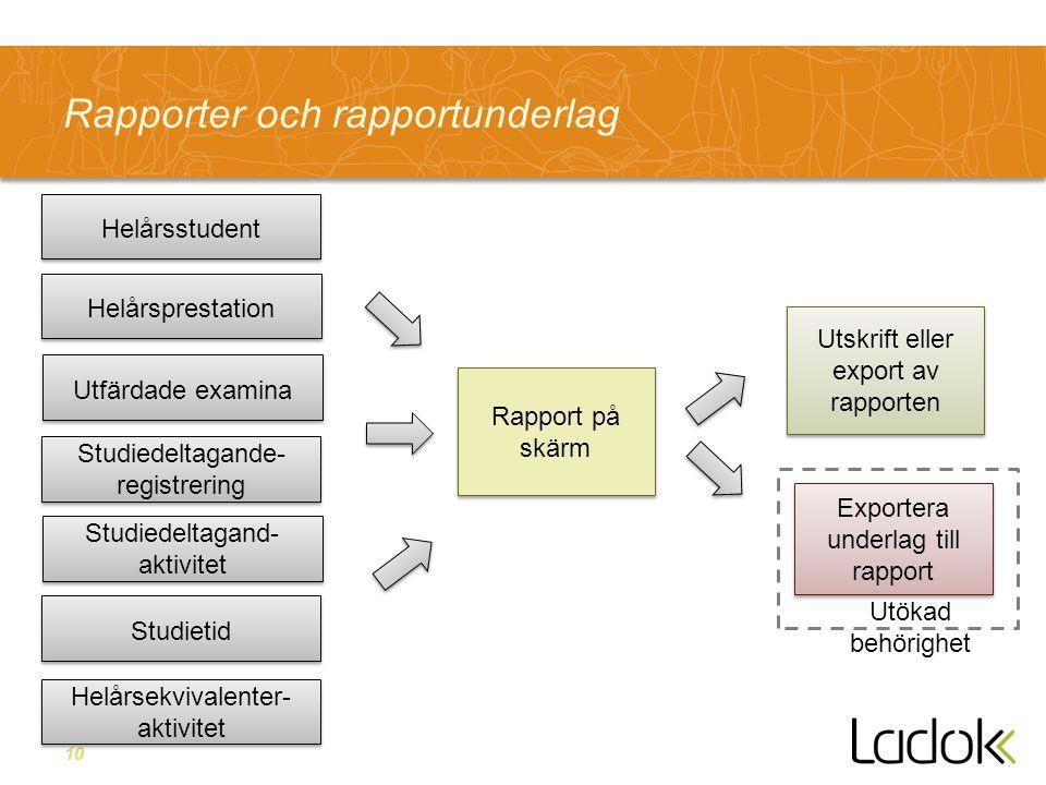 10 Rapporter och rapportunderlag Utskrift eller export av rapporten Helårsstudent Helårsekvivalenter- aktivitet Studiedeltagand- aktivitet Studiedelta