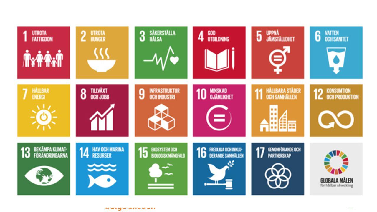 Agenda Livsmiljö - för bättre kunskap i samhällsbyggandets tidiga skeden Några exempel Positive Footprint Housing.