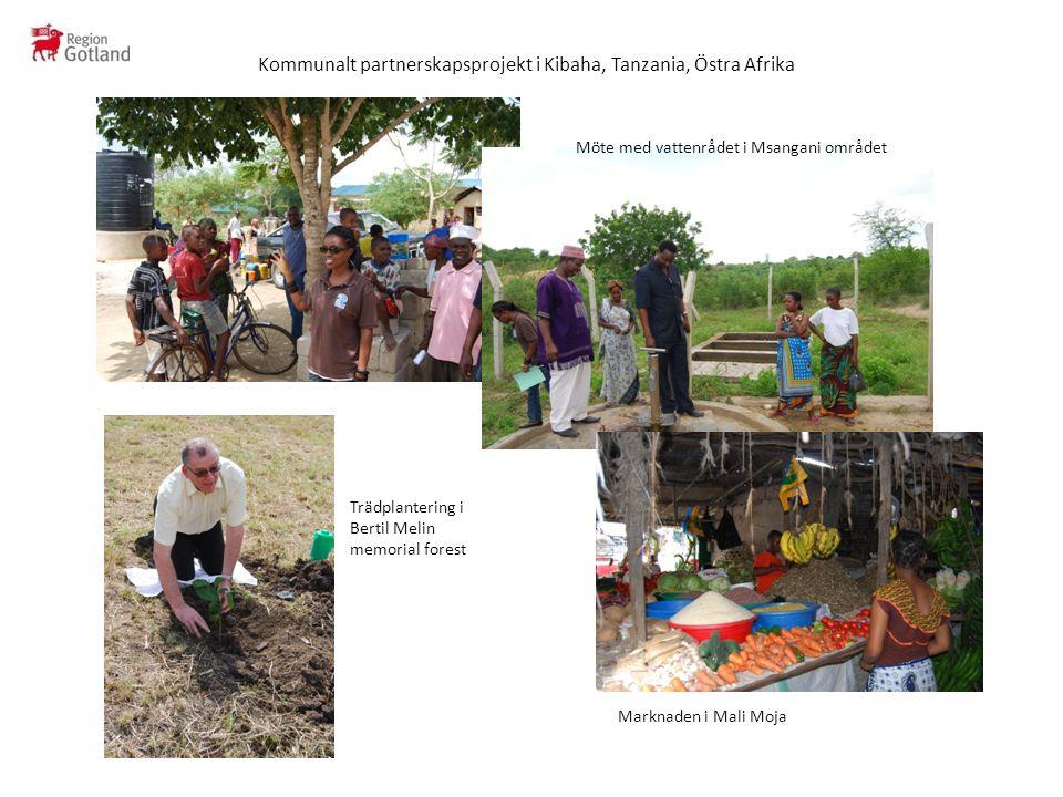 Kommunalt partnerskapsprojekt i Kibaha, Tanzania, Östra Afrika Möte med vattenrådet i Msangani området Trädplantering i Bertil Melin memorial forest Marknaden i Mali Moja