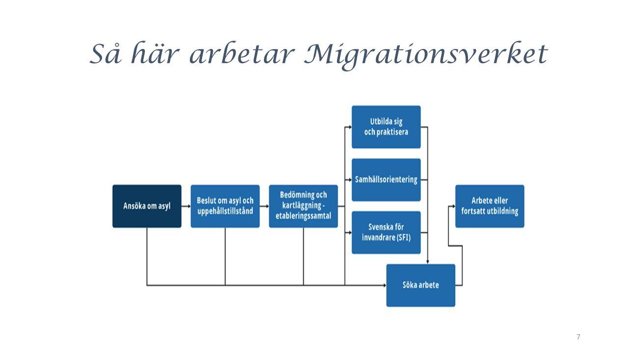 Så här arbetar Migrationsverket 7
