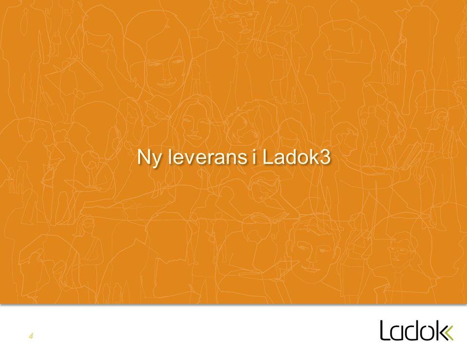 4 Ny leverans i Ladok3