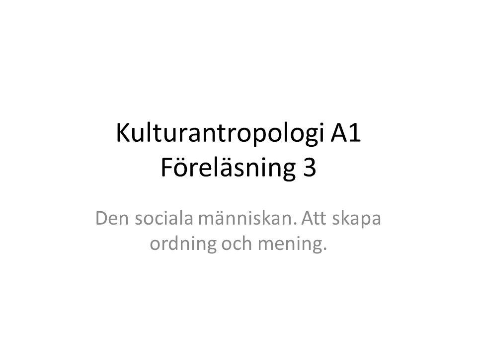 Kulturantropologi A1 Föreläsning 3 Den sociala människan. Att skapa ordning och mening.