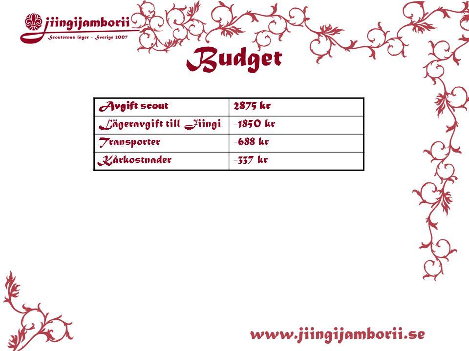 Avgift scout2875 kr Lägeravgift till Jiingi-1850 kr Transporter-688 kr Kårkostnader-337 kr Budget