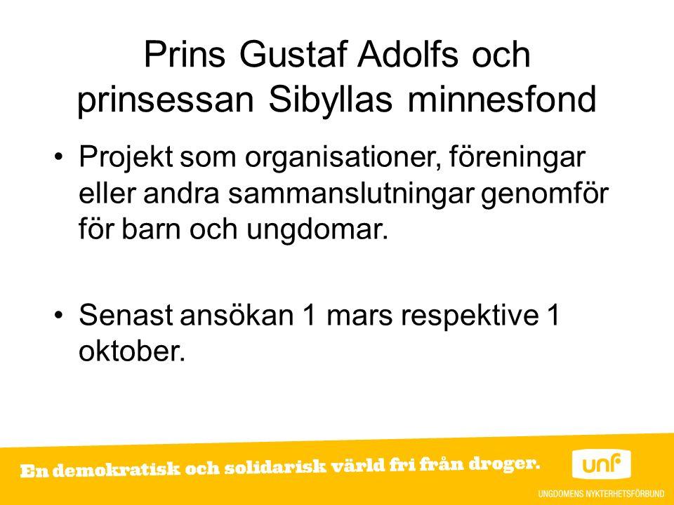Prins Gustaf Adolfs och prinsessan Sibyllas minnesfond Projekt som organisationer, föreningar eller andra sammanslutningar genomför för barn och ungdomar.