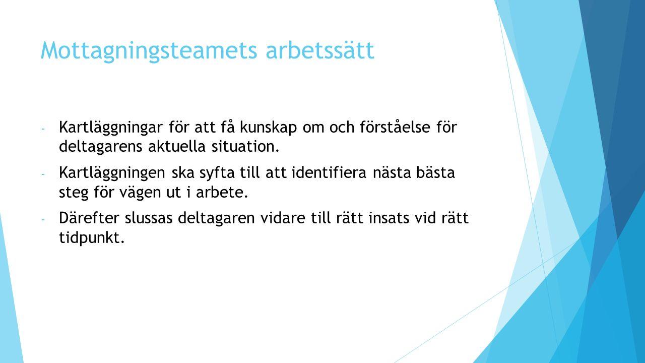 Mottagningsteamets arbetssätt - Kartläggningar för att få kunskap om och förståelse för deltagarens aktuella situation.