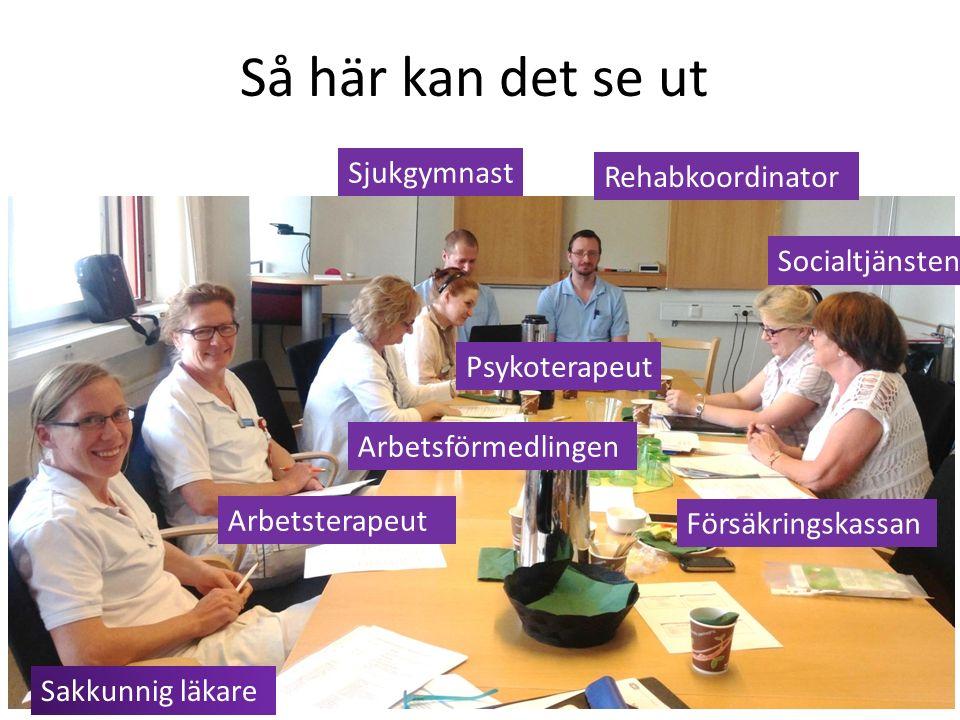 Så här kan det se ut Sakkunnig läkare Arbetsförmedlingen Försäkringskassan Psykoterapeut Arbetsterapeut Socialtjänsten Rehabkoordinator Sjukgymnast