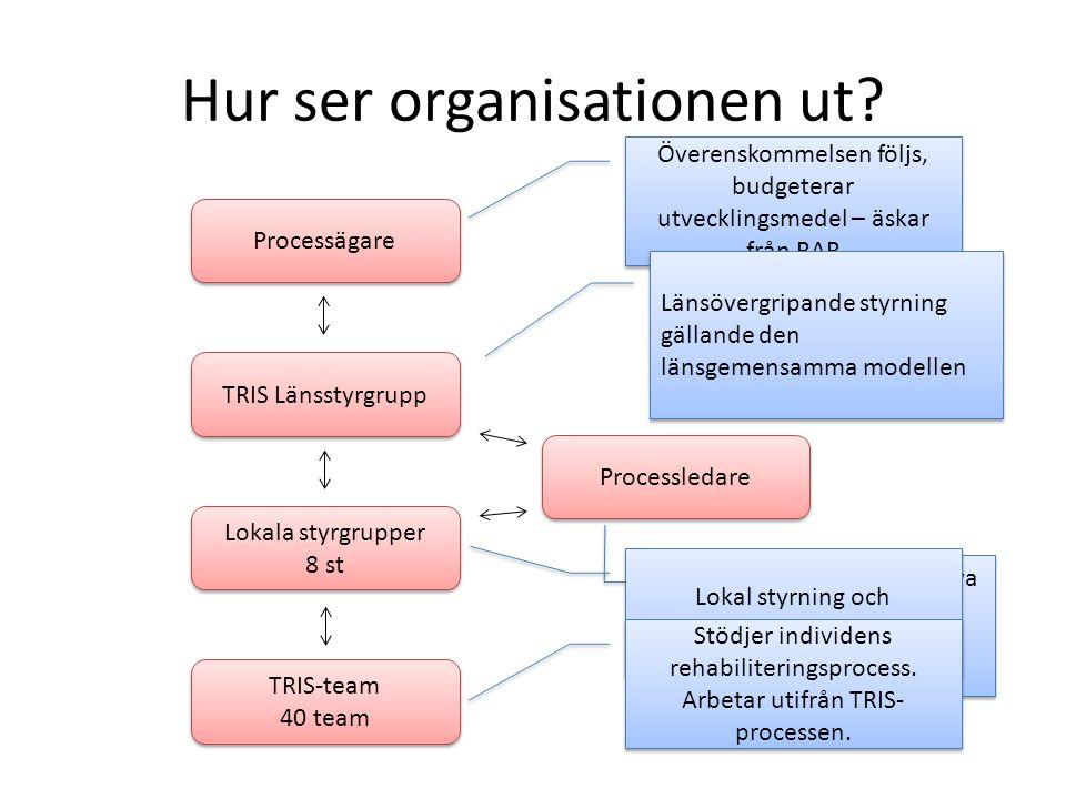 Hur ser organisationen ut? Processägare TRIS Länsstyrgrupp Lokala styrgrupper 8 st Lokala styrgrupper 8 st Processledare TRIS-team 40 team TRIS-team 4