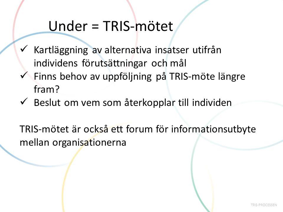 Under = TRIS-mötet Kartläggning av alternativa insatser utifrån individens förutsättningar och mål Finns behov av uppföljning på TRIS-möte längre fram.