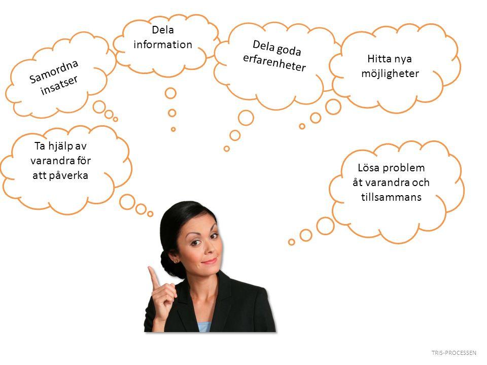 TRIS-PROCESSEN Dela information Dela goda erfarenheter Hitta nya möjligheter Ta hjälp av varandra för att påverka Lösa problem åt varandra och tillsam