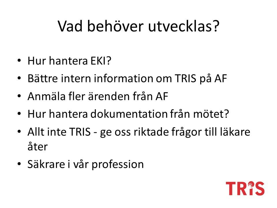 Vad behöver utvecklas? Hur hantera EKI? Bättre intern information om TRIS på AF Anmäla fler ärenden från AF Hur hantera dokumentation från mötet? Allt