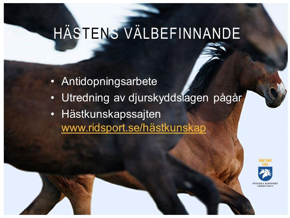 ANSVAR HÄSTENS VÄLBEFINNANDE Antidopningsarbete Utredning av djurskyddslagen pågår Hästkunskapssajten www.ridsport.se/hästkunskap www.ridsport.se/häst