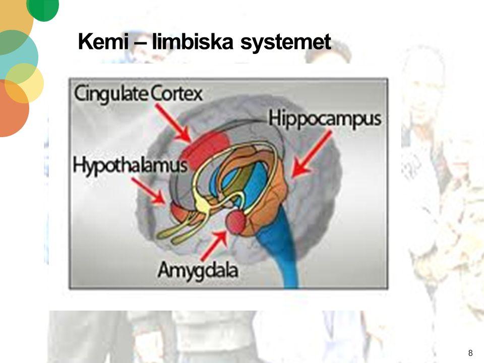 Kemi – limbiska systemet 8