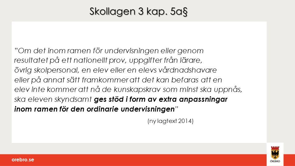 orebro.se Förmåga/funktion Krav Hinder för inlärning och utveckling Extra anpassningar Hänsyn ska tas till elevernas olika förutsättningar och behov.