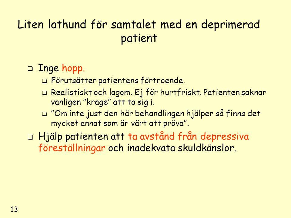 13 Liten lathund för samtalet med en deprimerad patient  Inge hopp.