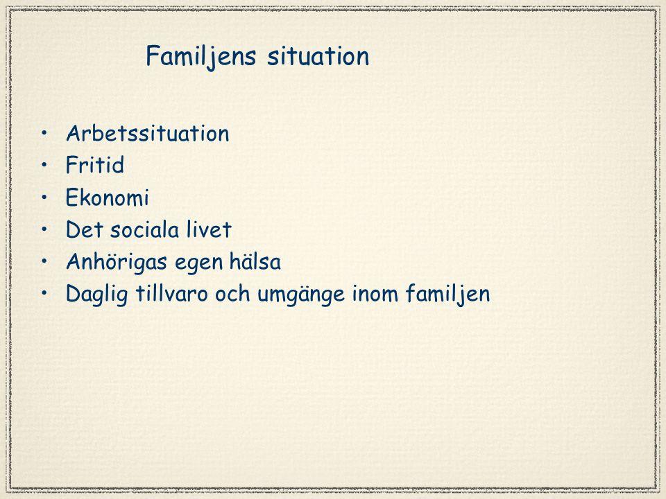 Familjens situation Arbetssituation Fritid Ekonomi Det sociala livet Anhörigas egen hälsa Daglig tillvaro och umgänge inom familjen