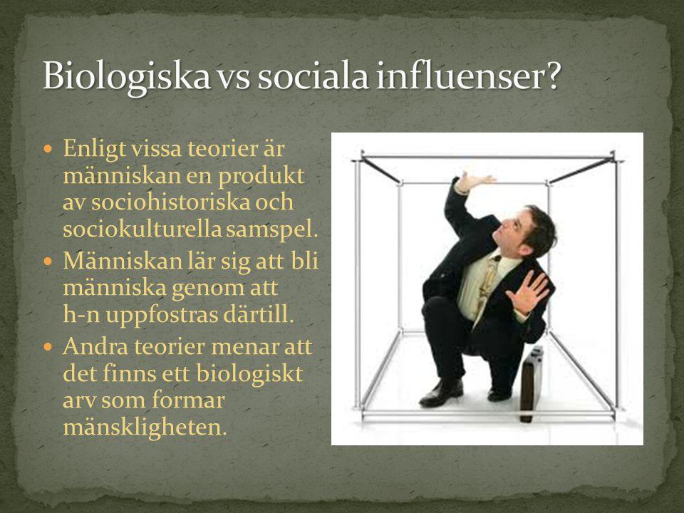 Enligt vissa teorier är människan en produkt av sociohistoriska och sociokulturella samspel.
