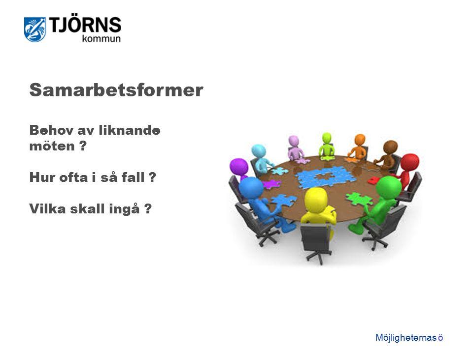 Möjligheternas ö Samarbetsformer Behov av liknande möten Hur ofta i så fall Vilka skall ingå