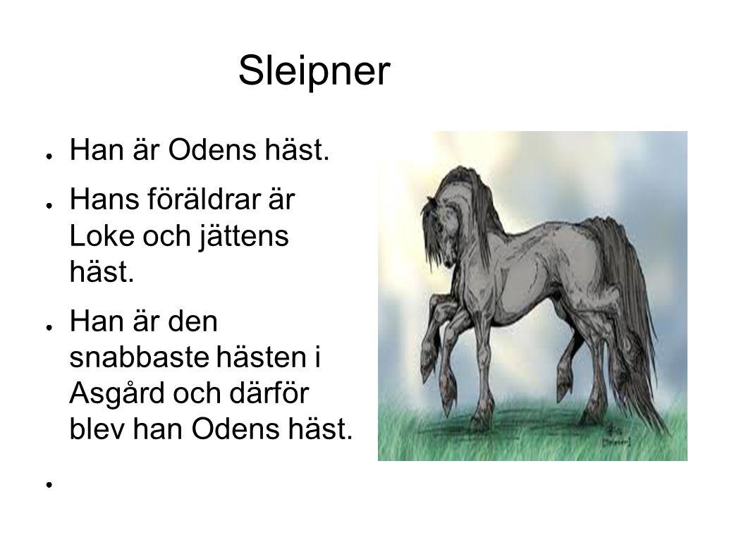 Sleipner ● Han är Odens häst. ● Hans föräldrar är Loke och jättens häst.