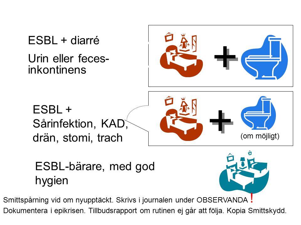 ESBL + diarré Urin eller feces- inkontinens ESBL + Sårinfektion, KAD, drän, stomi, trach ESBL-bärare, med god hygien (om möjligt) Smittspårning vid om nyupptäckt.