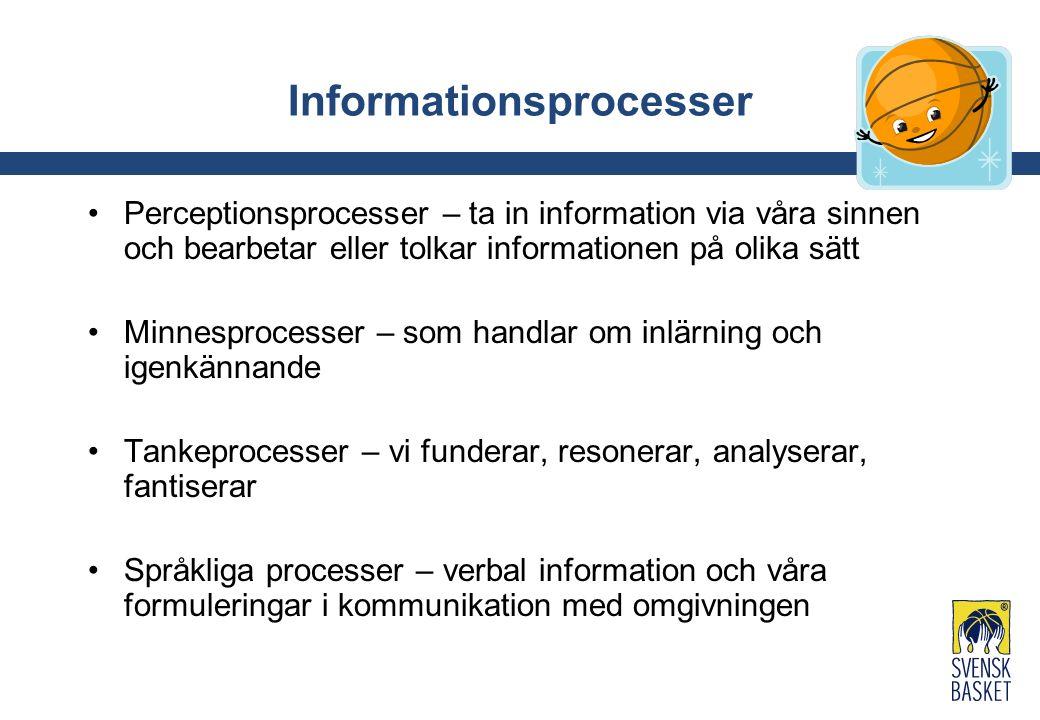 Informationsprocesser Perceptionsprocesser – ta in information via våra sinnen och bearbetar eller tolkar informationen på olika sätt Minnesprocesser – som handlar om inlärning och igenkännande Tankeprocesser – vi funderar, resonerar, analyserar, fantiserar Språkliga processer – verbal information och våra formuleringar i kommunikation med omgivningen