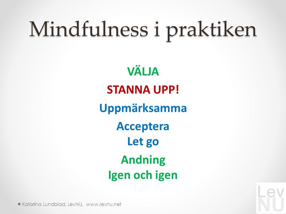 Mindfulness i praktiken VÄLJA STANNA UPP.