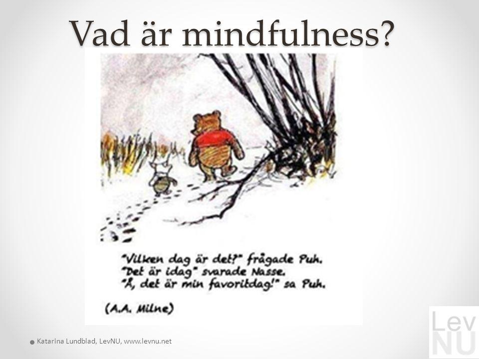 Vad är mindfulness? Katarina Lundblad, LevNU, www.levnu.net