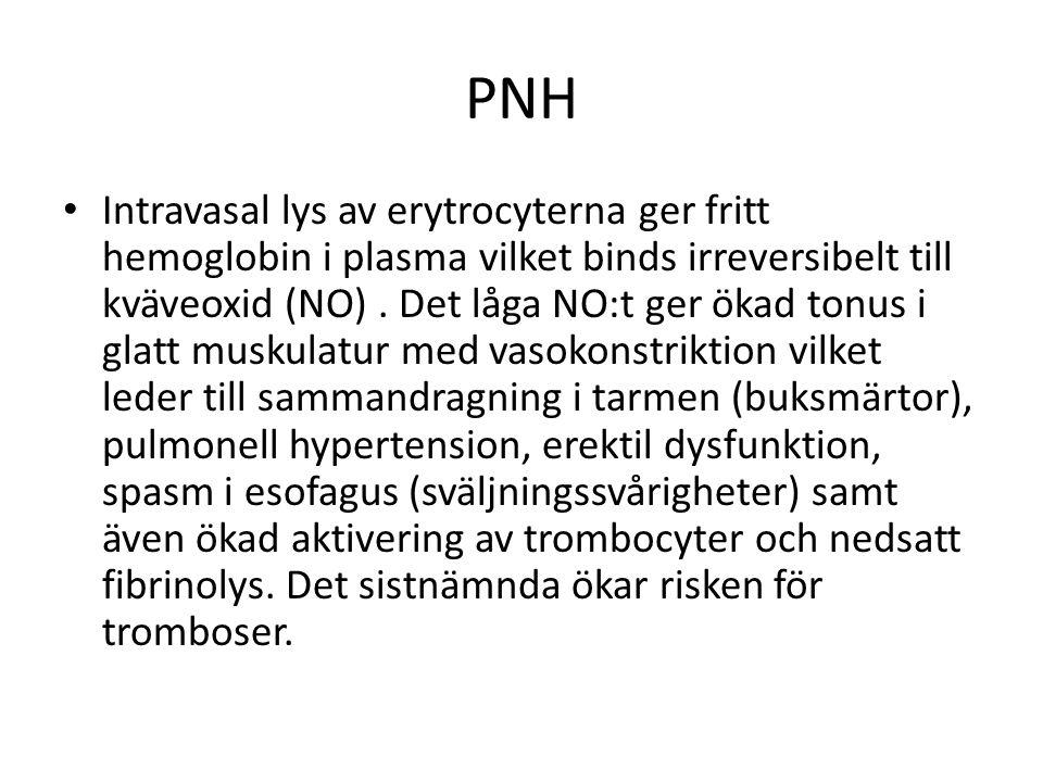 PNH Intravasal lys av erytrocyterna ger fritt hemoglobin i plasma vilket binds irreversibelt till kväveoxid (NO).