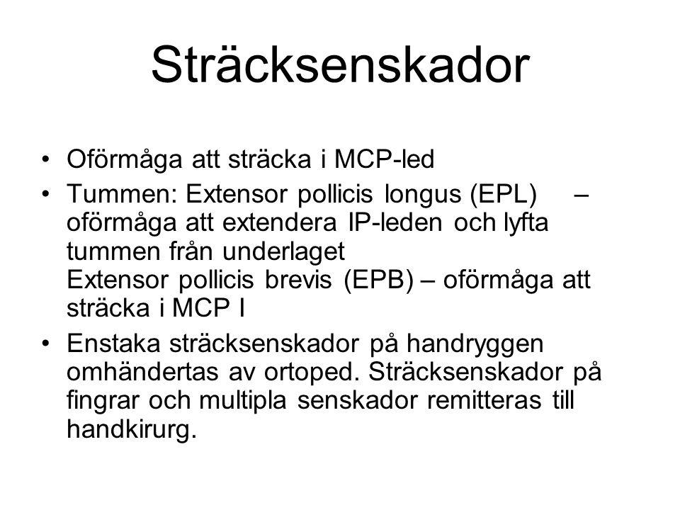 Sträcksenskador Oförmåga att sträcka i MCP-led Tummen: Extensor pollicis longus (EPL) – oförmåga att extendera IP-leden och lyfta tummen från underlag