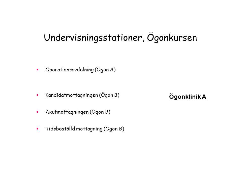 Undervisningsstationer, Ögonkursen  Operationsavdelning (Ögon A)  Kandidatmottagningen (Ögon B)  Akutmottagningen (Ögon B)  Tidsbeställd mottagning (Ögon B) Ögonklinik A Ögonklinik B
