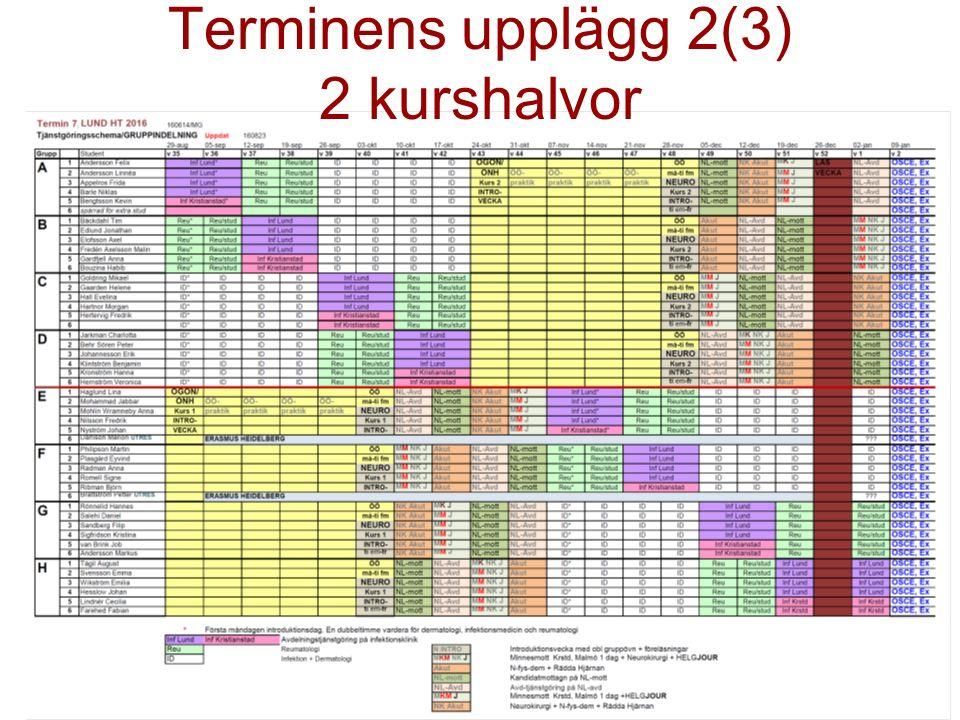 Terminens upplägg 2(3) 2 kurshalvor