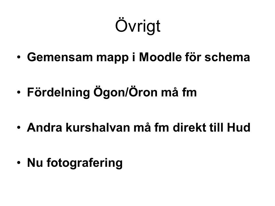 Övrigt Gemensam mapp i Moodle för schema Fördelning Ögon/Öron må fm Andra kurshalvan må fm direkt till Hud Nu fotografering