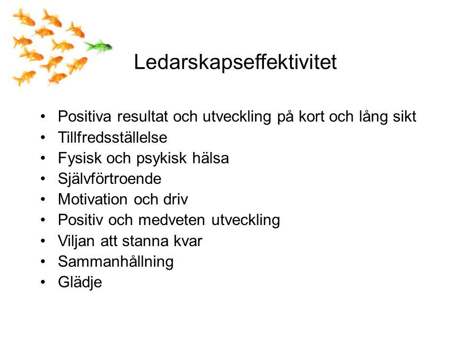 Ledarskapseffektivitet Positiva resultat och utveckling på kort och lång sikt Tillfredsställelse Fysisk och psykisk hälsa Självförtroende Motivation och driv Positiv och medveten utveckling Viljan att stanna kvar Sammanhållning Glädje