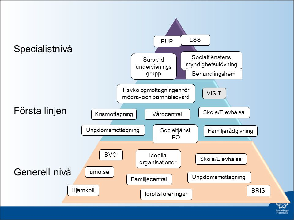 6 organisatoriska vägval och typmodeller