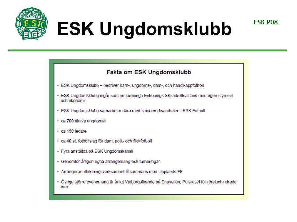 ESK P08 Fotbollsglädje (6–9 år) (Ur SVFFs spelarutbildningsplan 2014) Spelet fotboll ska upptäckas på ett naturligt och lekfullt sätt.
