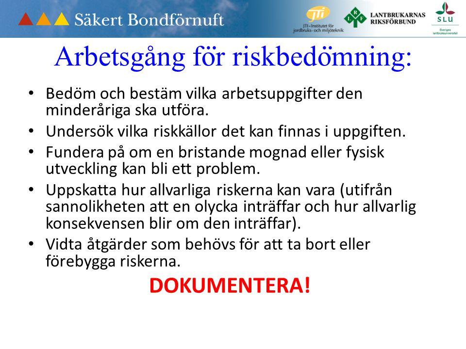Arbetsgång fo ̈ r riskbedo ̈ mning: Bedöm och bestäm vilka arbetsuppgifter den minderåriga ska utföra.