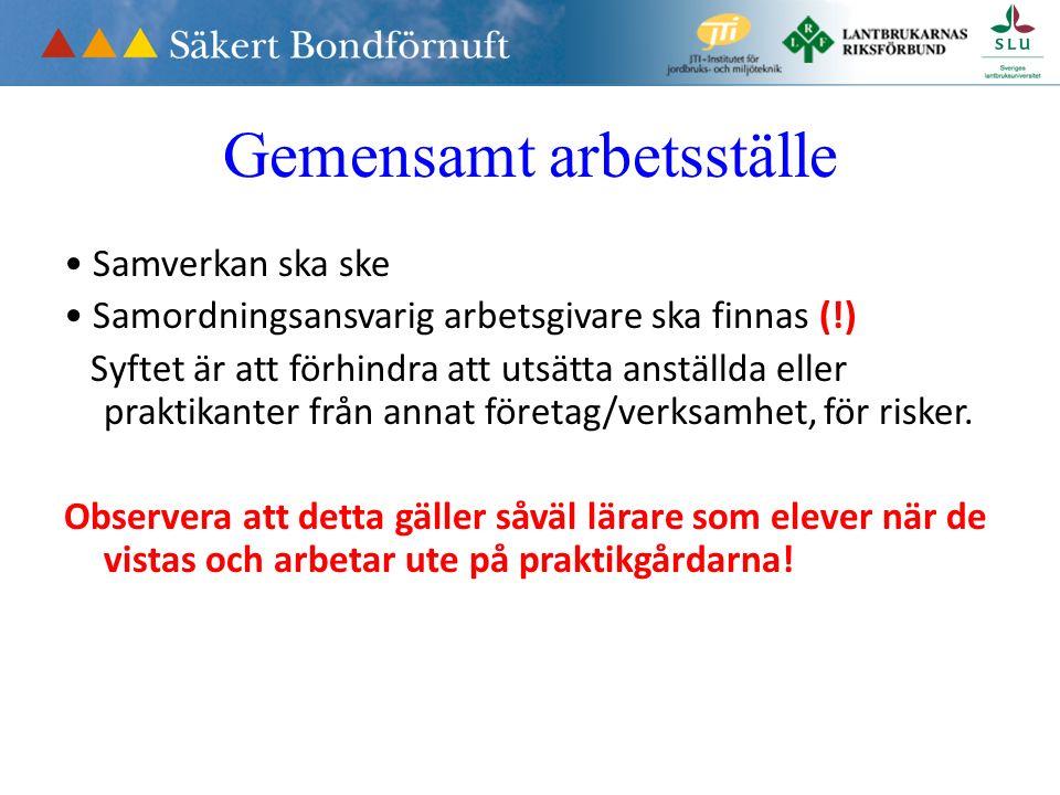 Minderåriga AFS 2012:3 Särskilda regler för dem under 18 år Tänk på Anpassning till individens förutsättningar Introduktion Förbud mot riskfyllda arbetsuppgifter (förbudet kan vara ett totalförbud eller bara avse ensamarbete i den aktuella uppgiften).