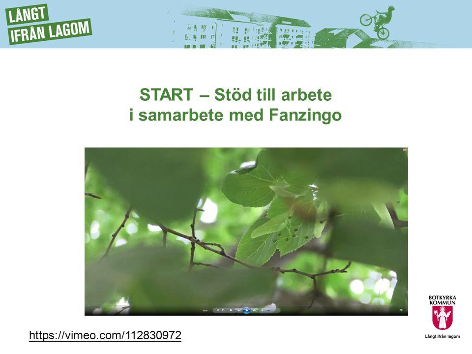START – Stöd till arbete i samarbete med Fanzingo https://vimeo.com/112830972