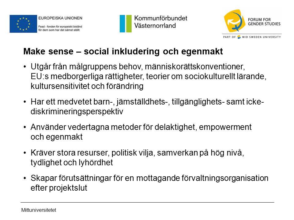 Mittuniversitetet Make sense – social inkludering och egenmakt Utgår från målgruppens behov, människorättskonventioner, EU:s medborgerliga rättigheter, teorier om sociokulturellt lärande, kultursensitivitet och förändring Har ett medvetet barn-, jämställdhets-, tillgänglighets- samt icke- diskrimineringsperspektiv Använder vedertagna metoder för delaktighet, empowerment och egenmakt Kräver stora resurser, politisk vilja, samverkan på hög nivå, tydlighet och lyhördhet Skapar förutsättningar för en mottagande förvaltningsorganisation efter projektslut