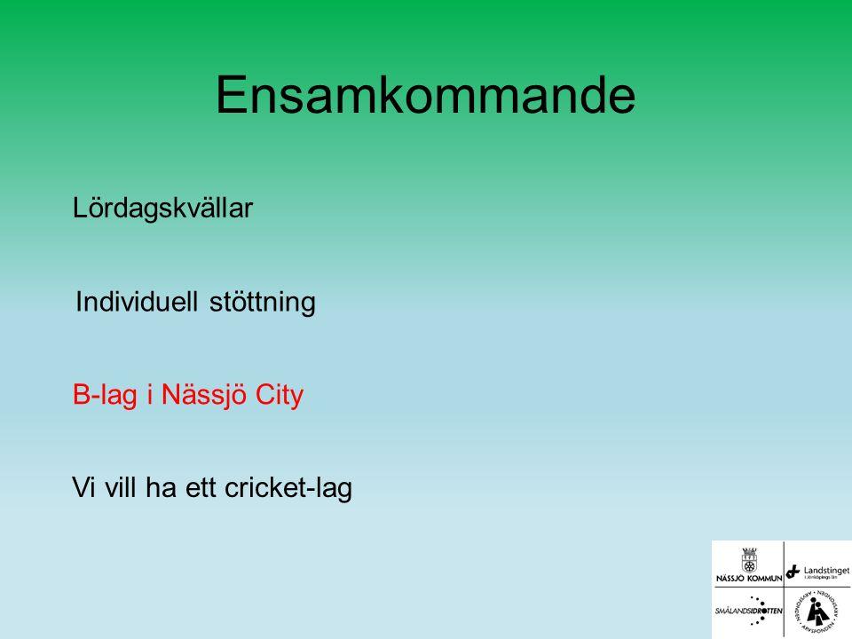 Ensamkommande Lördagskvällar Individuell stöttning B-lag i Nässjö City Vi vill ha ett cricket-lag
